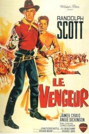 background picture for movie Le vengeur