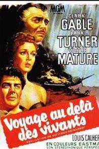 Affiche du film : Voyage au-dela des vivants