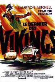 background picture for movie Le dernier des vikings