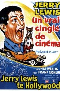 Affiche du film : Un vrai cinglé du cinema