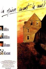 Affiche du film : La maison avant la nuit