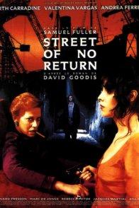 Affiche du film : Sans espoir de retour
