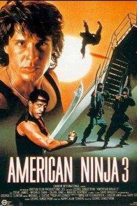 american ninja 3 le film. Black Bedroom Furniture Sets. Home Design Ideas