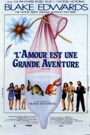 background picture for movie L'amour est une grande aventure