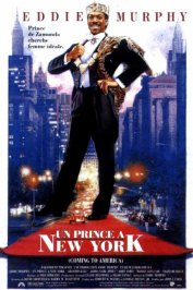 background picture for movie Un prince a new york