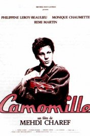 background picture for movie Camomille