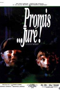Affiche du film : Promis jure