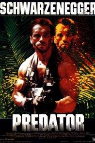 Affiche du film : Predator