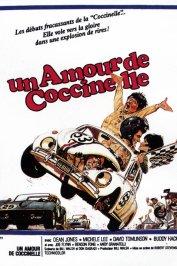 background picture for movie Un amour de coccinelle