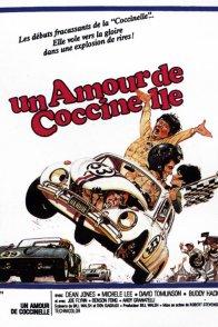 Affiche du film : Un amour de coccinelle