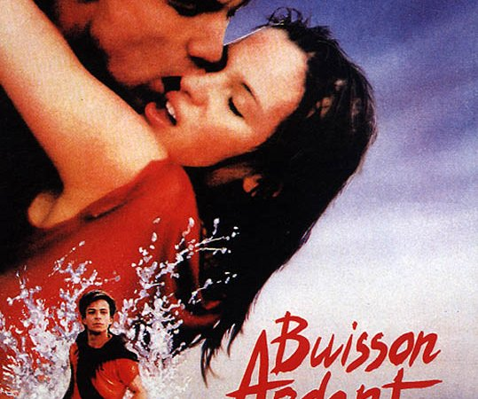 Photo du film : Buisson ardent