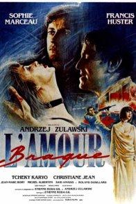 Affiche du film : L'amour braque