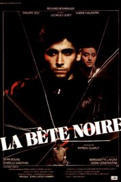 background picture for movie La bete noire
