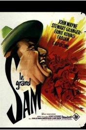 background picture for movie Le grand sam