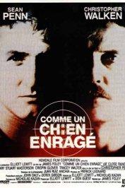 background picture for movie Comme un chien enragé
