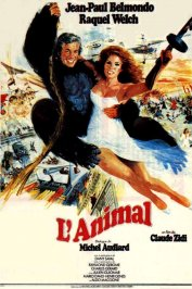 background picture for movie L'animal