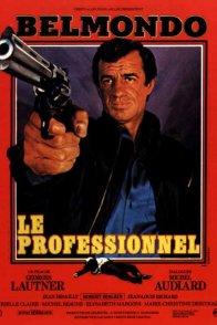 Affiche du film : Le professionnel
