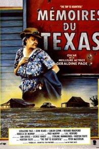 Affiche du film : Memoires du texas