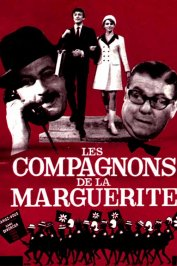 background picture for movie Les compagnons de la marguerite