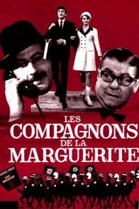 Affiche du film : Les compagnons de la marguerite
