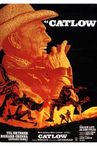 Affiche du film : Catlow