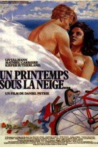 Affiche du film : Un printemps sous la neige