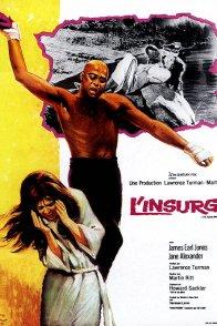 Affiche du film : L'insurgé