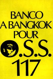 background picture for movie Banco à Bangkok pour OSS 117