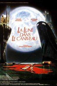 Affiche du film : La lune dans le caniveau