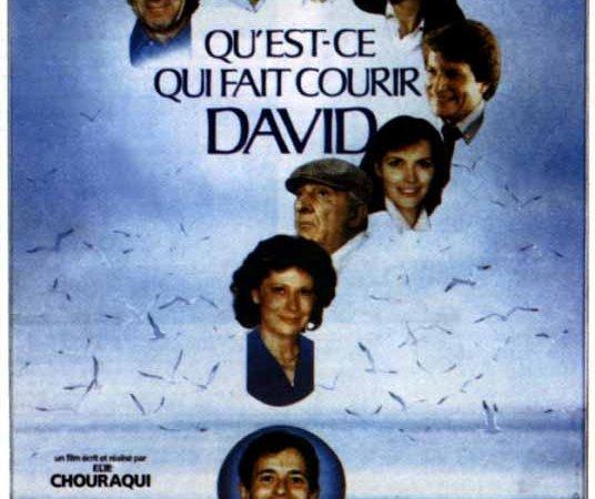 Photo du film : Qu'est-ce qui fait courir David