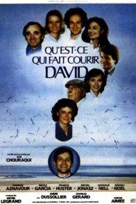 Affiche du film : Qu'est-ce qui fait courir David