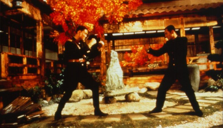Photo du film : Fist of Legend