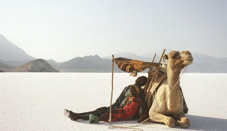Photo du film : Si le vent souleve les sables