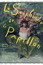Affiche du film : Le scaphandre et le papillon