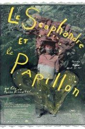 background picture for movie Le scaphandre et le papillon