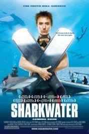 background picture for movie Les seigneurs de la mer