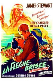 Affiche du film La Flèche brisée