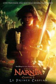 Affiche du film : Le Monde de Narnia : chapitre 2 - Prince Caspian