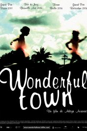 background picture for movie Wonderful town