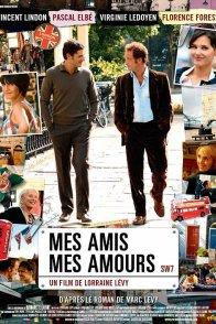 Affiche du film : Mes amis, mes amours