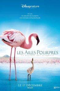Affiche du film : Les Ailes pourpres : Le mystère des flamants