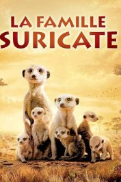 background picture for movie La famille Suricate