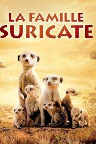 Affiche du film : La famille Suricate