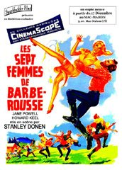 background picture for movie Les sept femmes de Barberousse