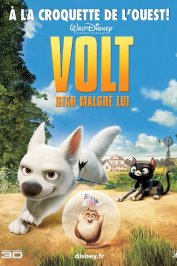 background picture for movie Volt, star malgré lui