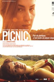 background picture for movie Picnic