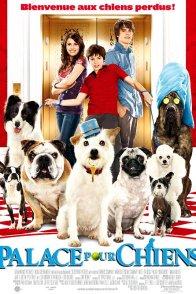 Affiche du film : Palace pour chiens