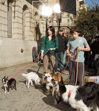 Photo du film : Palace pour chiens