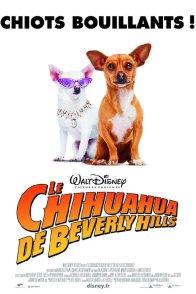 Affiche du film : Le Chihuahua de Beverly Hills