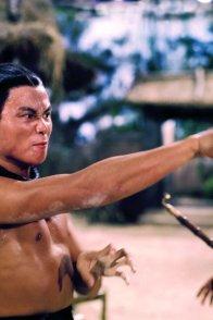 Affiche du film : Le Combat des maîtres
